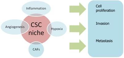 Investigating Molecular Profiles Of Ovarian Cancer An