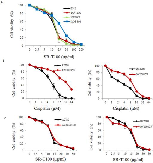 Combined cisplatin and PI3K-mTOR inhibitor in PTEN