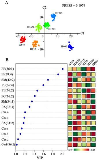 In Situ Characterizing Membrane Lipid Phenotype Of Human
