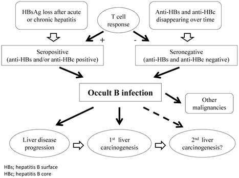 Update on Biology and Clinical Impact of Occult Hepatitis B Virus Infection