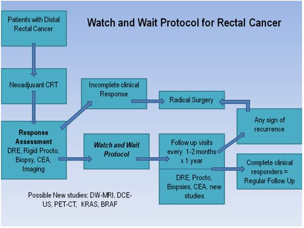 rectal cancer watch and wait)