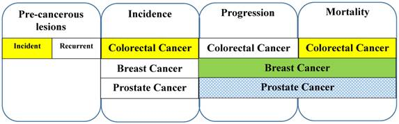 Vitamin D And Colorectal Breast And Prostate Cancers A Review Of The Epidemiological Evidence