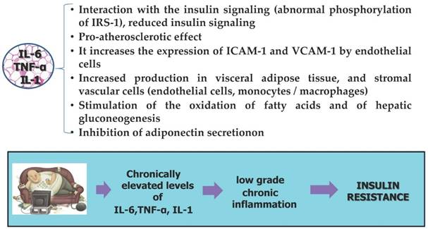 Obesity and cancer: the role of adipose tissue and adipo