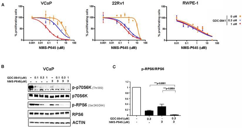 The Novel PIM1 Inhibitor NMS-P645 Reverses PIM1-Dependent
