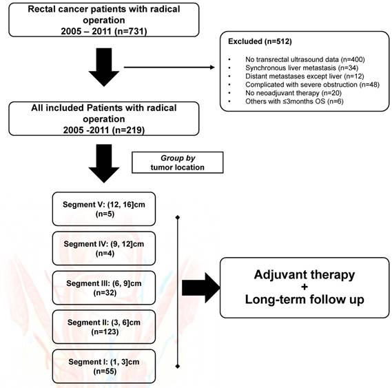 The Optimal Application Of Transrectal Ultrasound In Staging Of Rectal Cancer Following Neoadjuvant Therapy A Pragmatic Study For Accuracy Investigation