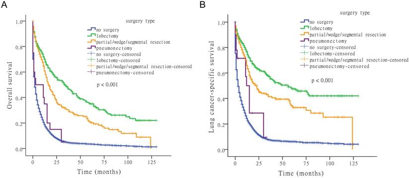 Survival Outcomes for Patients with Surgical and Non