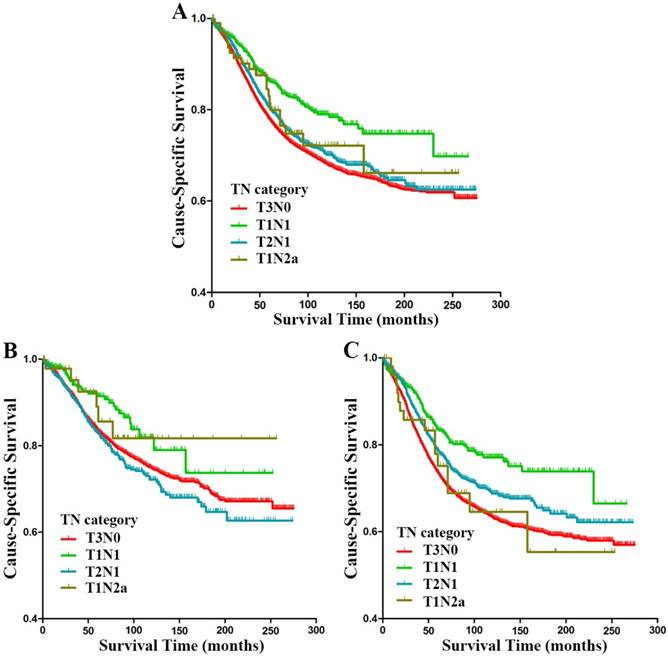 Survival Contradiction Between Stage Iia And Stage Iiia Rectal Cancer A Retrospective Study