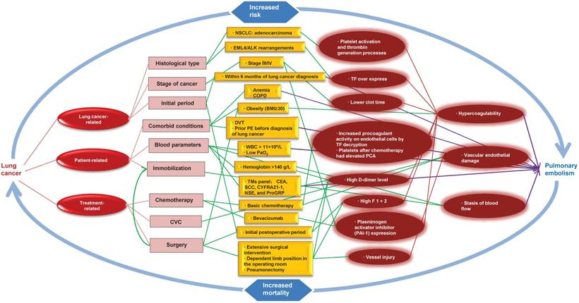 13dee528d Lung Cancer and Pulmonary Embolism  What Is the Relationship  A Review