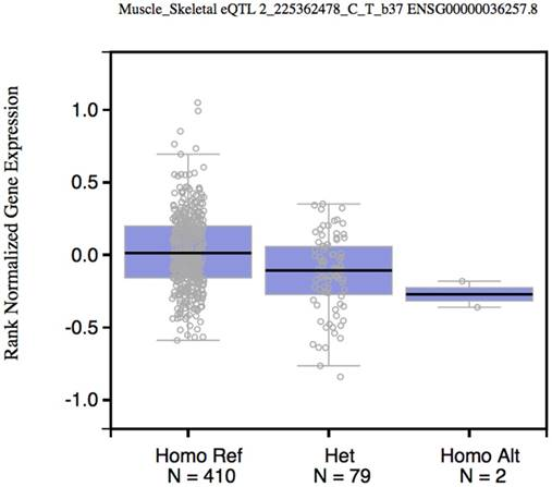 Variants in the 3'-untranslated region of CUL3 is associated