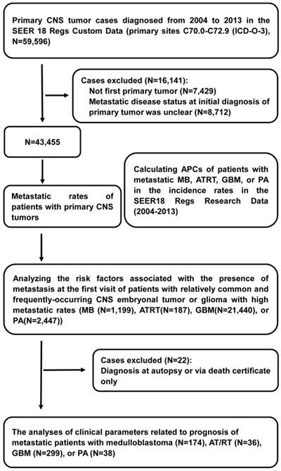 Incidence of metastatic disease and survival among patients