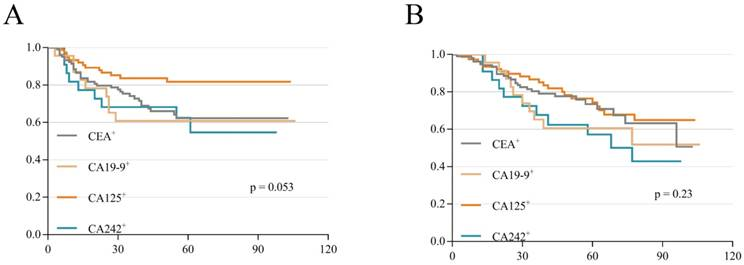 The Difference In Prognosis Of Stage Ii And Iii Colorectal Cancer Based On Preoperative Serum Tumor Markers