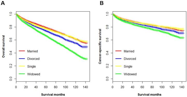 A real-world 1:1 propensity-matched study revealed unmarried