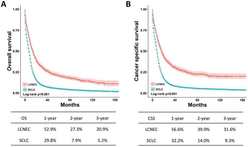 neuroendocrine cancer lungs prognosis)