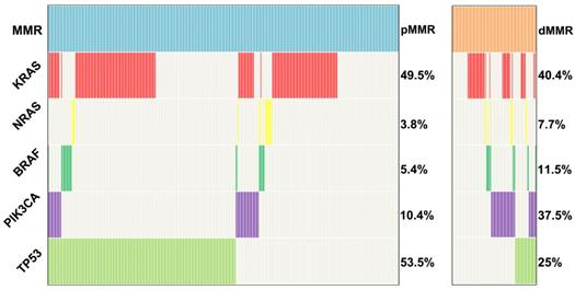 Prevalence And Characteristics Of Pik3ca Mutation In Mismatch Repair Deficient Colorectal Cancer