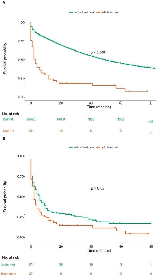 Prognostic Factors Among Brain Metastases In Newly Diagnosed Ovary Cancer A Large Real World Study