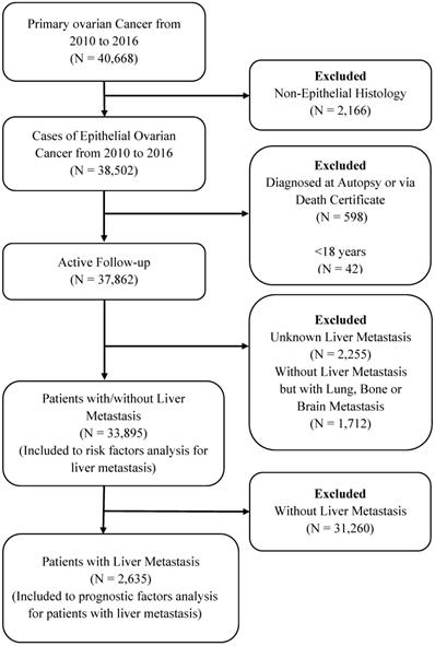 The Prevalence And Associated Factors For Liver Metastases Development And Prognosis In Newly Diagnosed Epithelial Ovarian Cancer A Large Population Based Study From The Seer Database